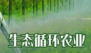 生态循环农业