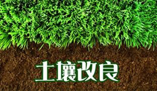 开展果菜茶有机肥替代化肥行动方